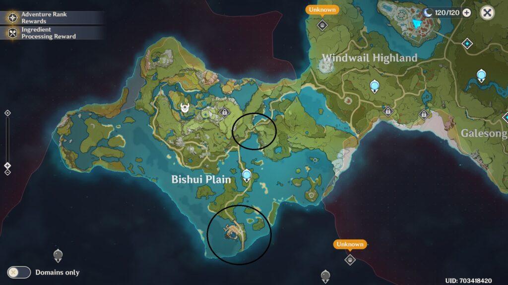 Genshin Impact Levelling Guide