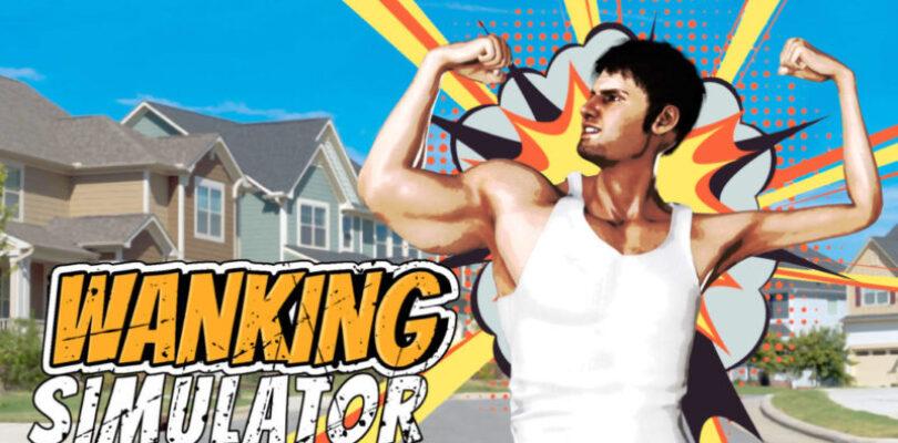 Wanking Simulator review