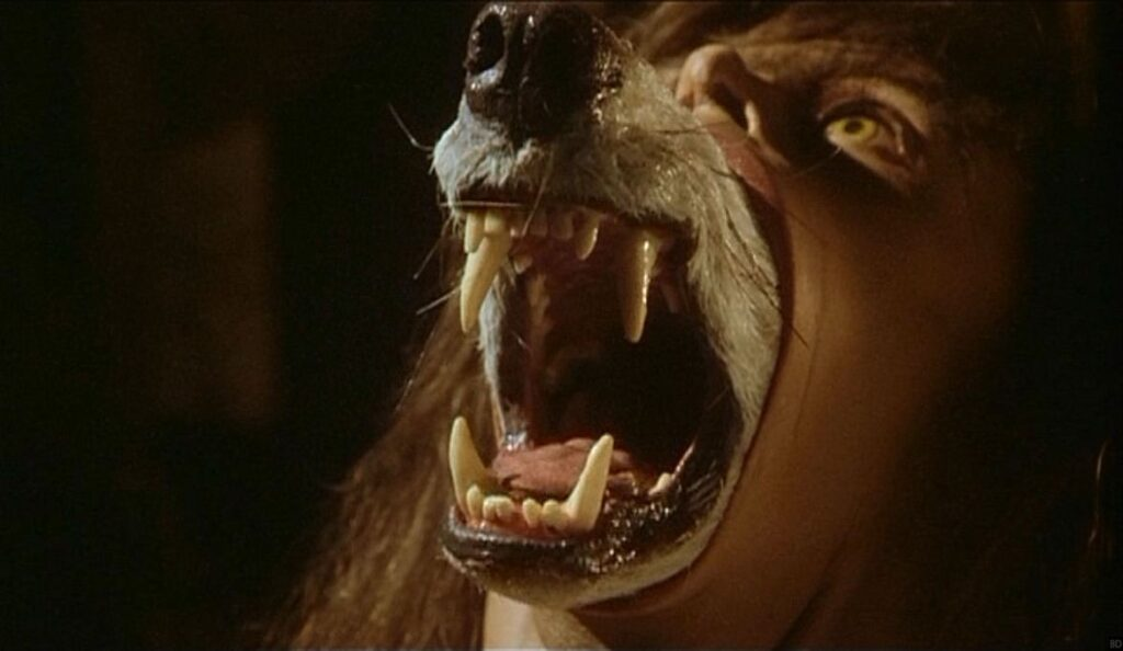 The Company Of Wolves 1984 Film Review